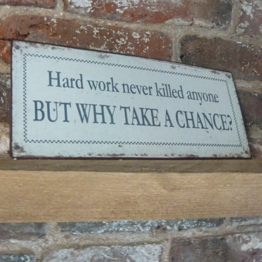 'Hard Work Never Killed Anyone, But Why Take A Chance?' Wall Plaque