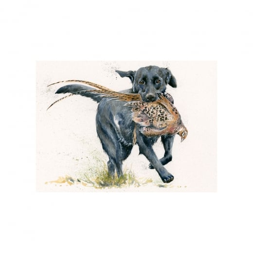 Special Delivery Hunting Dog Framed Limited Edition Print by Kay Johns